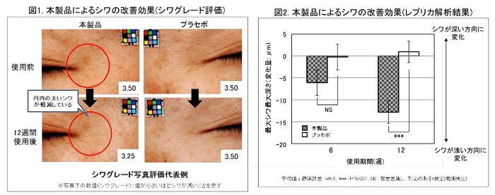 史上初!「シワ改善の医薬部外品」に女性の期待大!