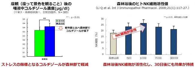 森林浴後のヒトNK細胞活性値